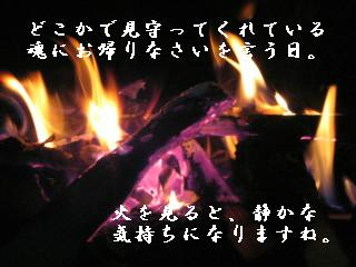 IMG_1544_1.JPG