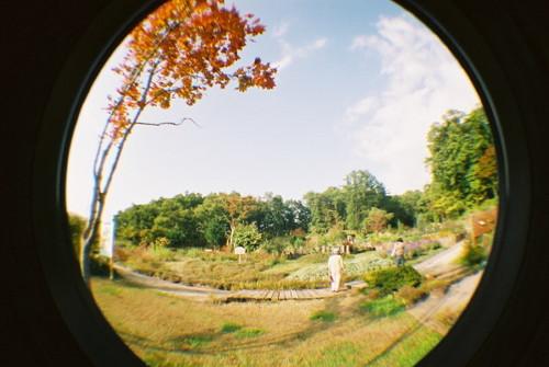 ハーブ園の庭で。