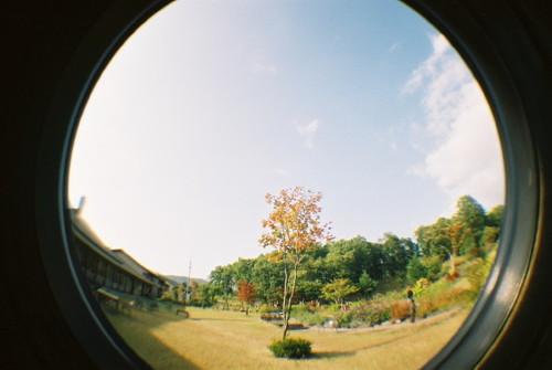 ハーブ園の庭でその4。